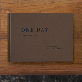 ONE DAY – LIFE WITH A DOG –