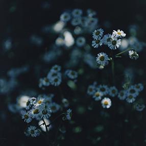 土と光 – 益子と器と写真の展示 –