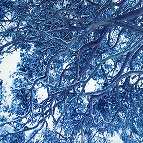 藤田はるか写真展「winter」開催のお知らせ