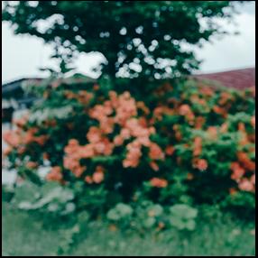 原田教正写真展「An Anticipation」開催のお知らせ